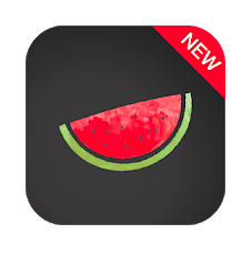 Melon VPN APK v3.6.100